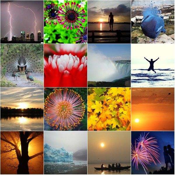 Motivation Mondays: AWE - we encounter everyday epiphanies in nature and life...
