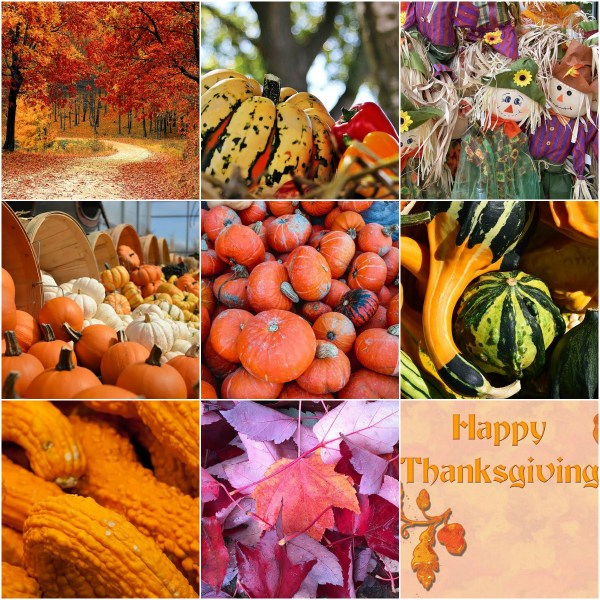 Motivation Mondays: THANKSGIVING - Abundant & Happy Moments to all