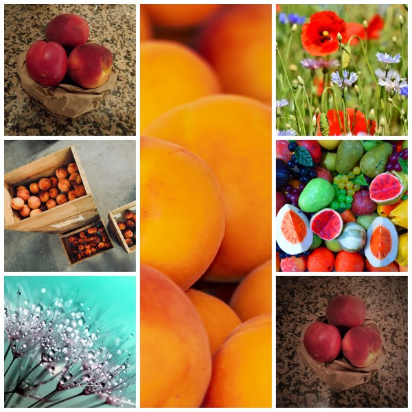 Motivation Mondays: Grow & Blossom