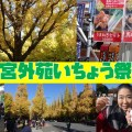 神宮外苑いちょう祭り2017で日本酒呑み比べしてラーメンでランチを堪能