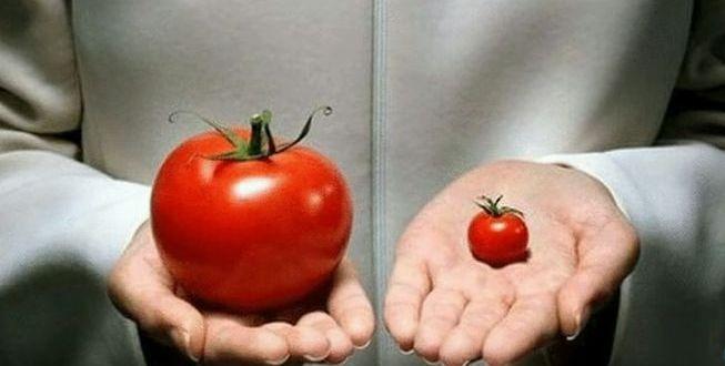 Продукты питания - современный взгляд и когнитивное мышление