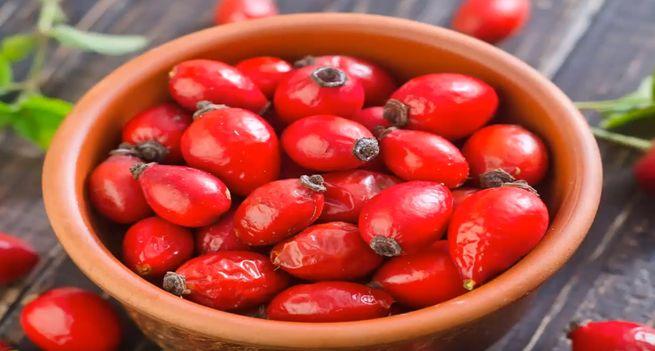 Полезные свойства плодов шиповника