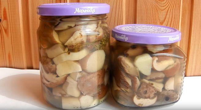 Как мариновать белые грибы