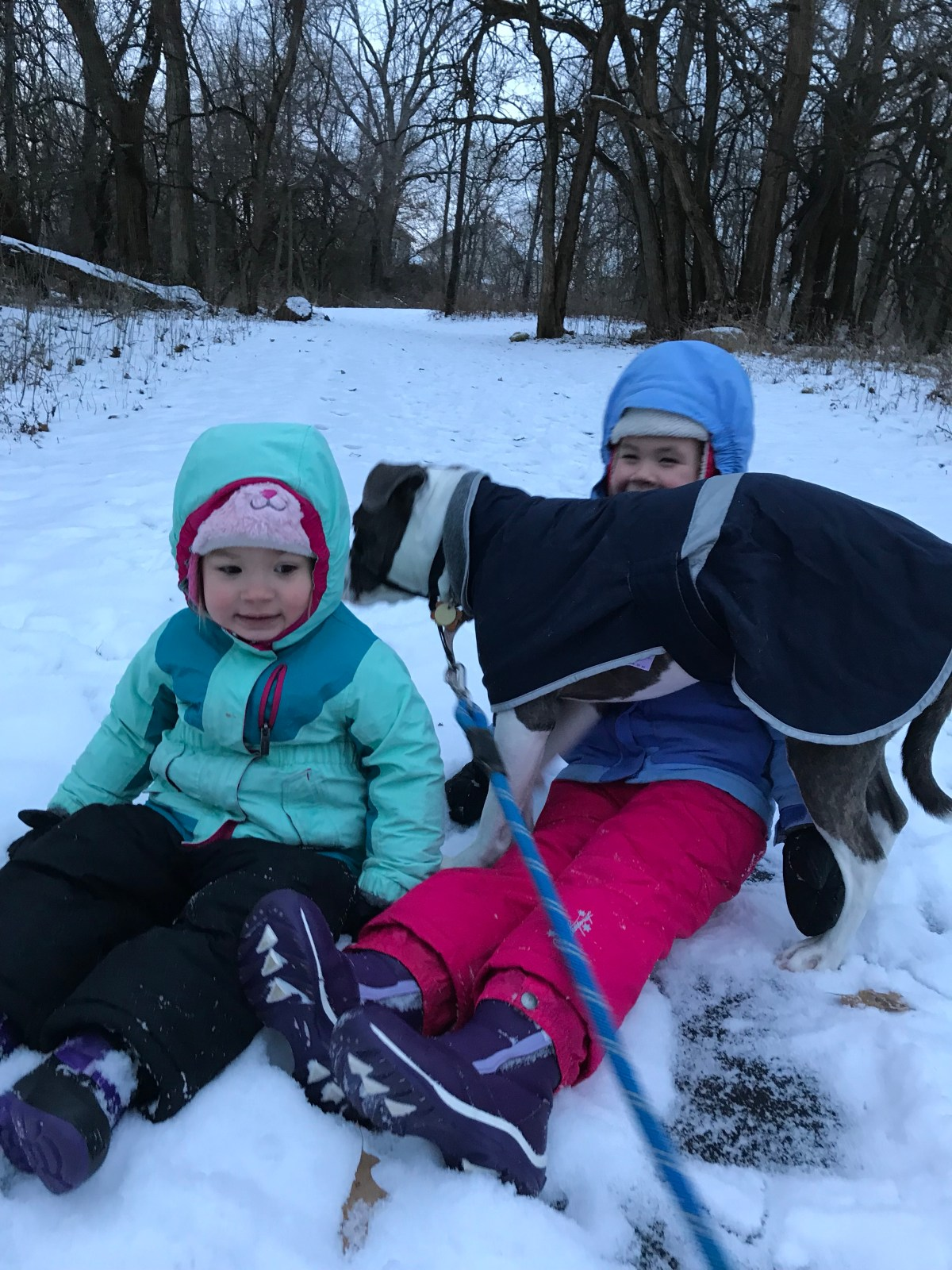 Is winter winning? Getting outdoors in the snow and cold can seem intimidating, and it doesn't always go well. Your kids will appreciate the outside play, even if you are ready to quit!