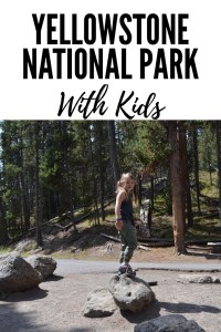 One day in Yellowstone National Park with Kids