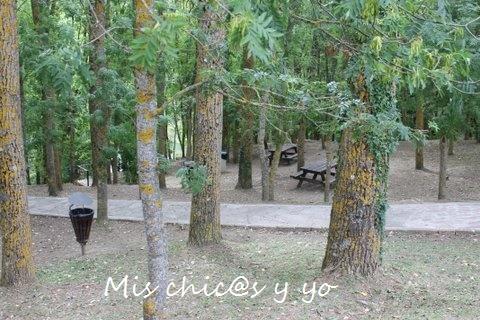 Mesas de picnic en Fontibre. Cantabria
