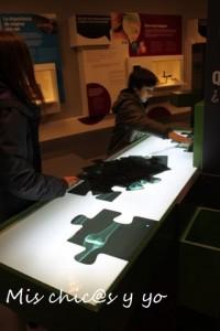 Museu de la Ciencia i la Ténica Terrasa