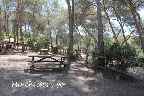 Zona de picnic en el conjunto ecohistóric0 del Pont del Diable