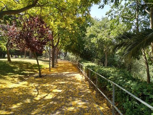Detalle del parque de Esplugues de Llobregat