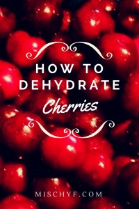 Dehydrating cherries for desserts, cookies, pies and other recipes. Mischyf.com