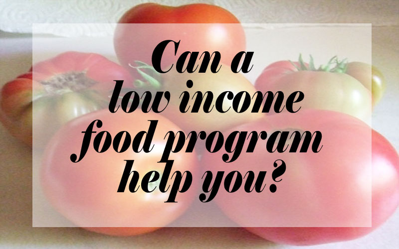 Can A Low Income Food Program Help You?