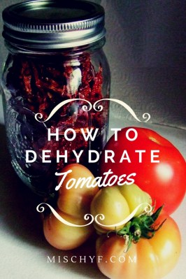 Tomatoes Dehydrating for Food Storage