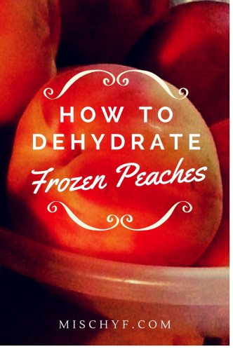 Dehydrated Frozen Peaches make great snacks. Mischyf.com