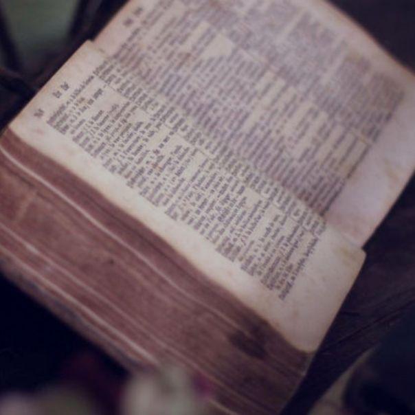Três atitudes que se deve ter antes de ler a Bíblia