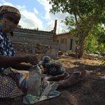 Bioconstrução: projeto encabeçado pela Aliança em Moçambique