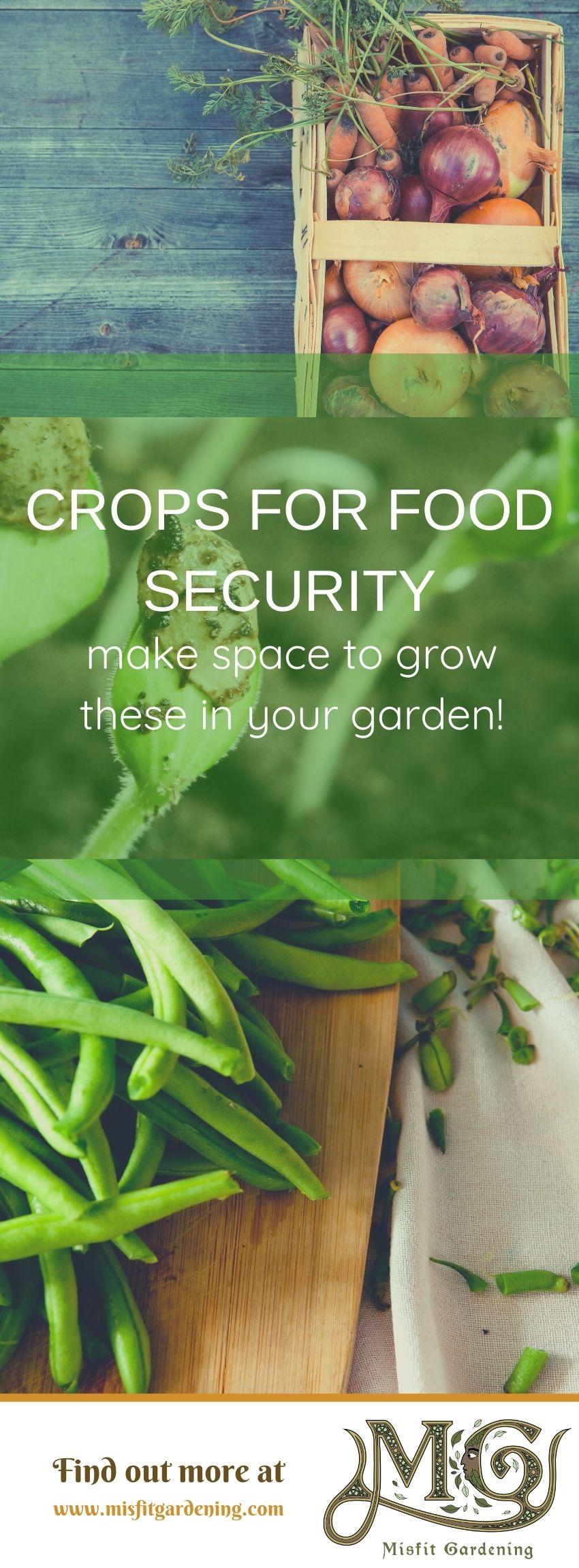 Klicken Sie hier, um einige Pflanzen für den Anbau von Nahrungsmitteln zu finden, oder stecken Sie sie fest und speichern Sie sie für später. #homestead #organic #gardening