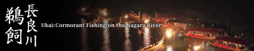 night fishing on the nagara river