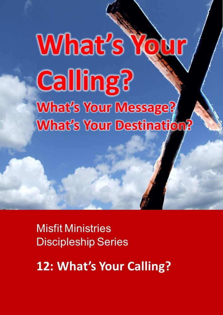 What's Your Calling? - pdf version