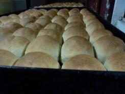 Como-hacer-las-mejores-empanadas-del-mundo_0019