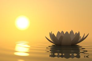 Meditation - Misha Almira