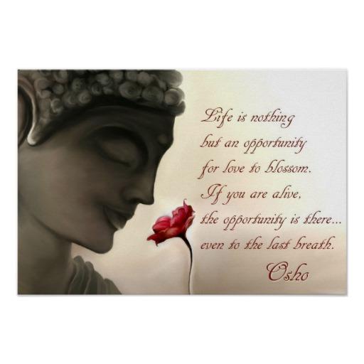 Osho Quotes - Misha Almira