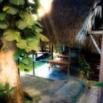 Top 5 Best Ayahuasca Retreats- Misha Almira