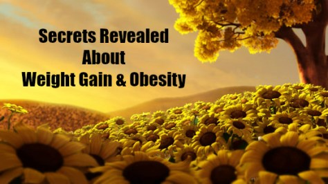 Secrets Revealed About Weight Gain & Obesity