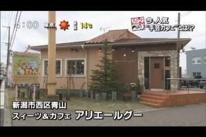 ミシンの友愛 カフェdeハンドメイド Teny 「夕方ワイド新潟一番」出演