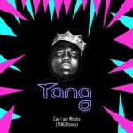 The Notorious B.I.G. — Can I Get Witcha (TANG REMIX) [Deep House, G-house]