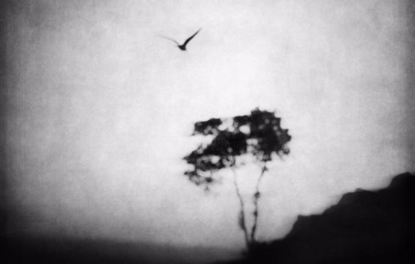 Michael Laurence Rogel - Earth Angel [Electronic, EDM]
