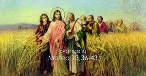 Mateo 13 36-43