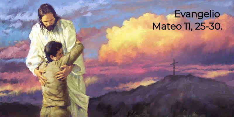 Mateo 11,25-30 | Misioneros Digitales Católicos MDC