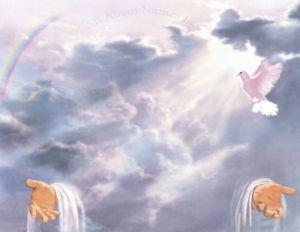 Dios revelado en Jesús