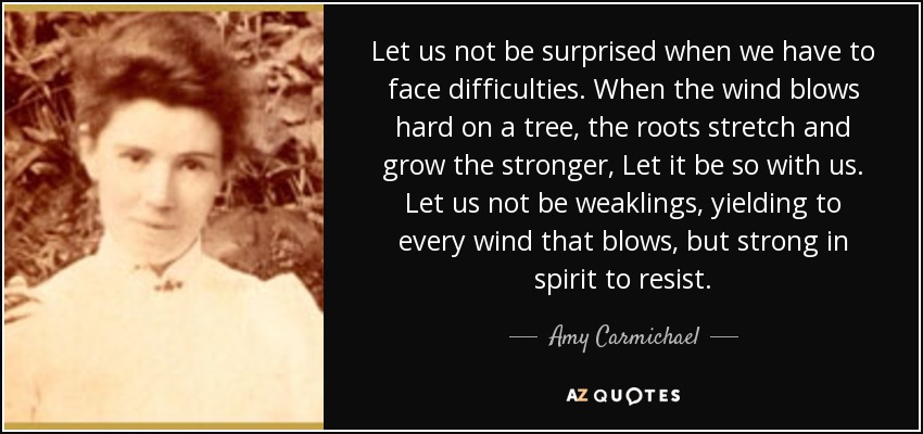 quote-let-us-not-be-surprised-when-we-have-to-face-difficulties-when-the-wind-blows-hard-on-amy-carmichael-85-61-76