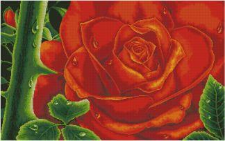 REDROSE: bordado a punto de cruz de gran rosa roja