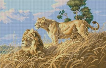 LION-1: bordado a punto de cruz de leones africanos