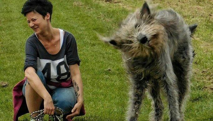 Mujer Wolfhound irlandés se agacha en el campo