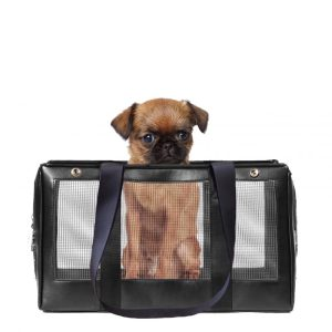 Mesh Base Pet Carrier
