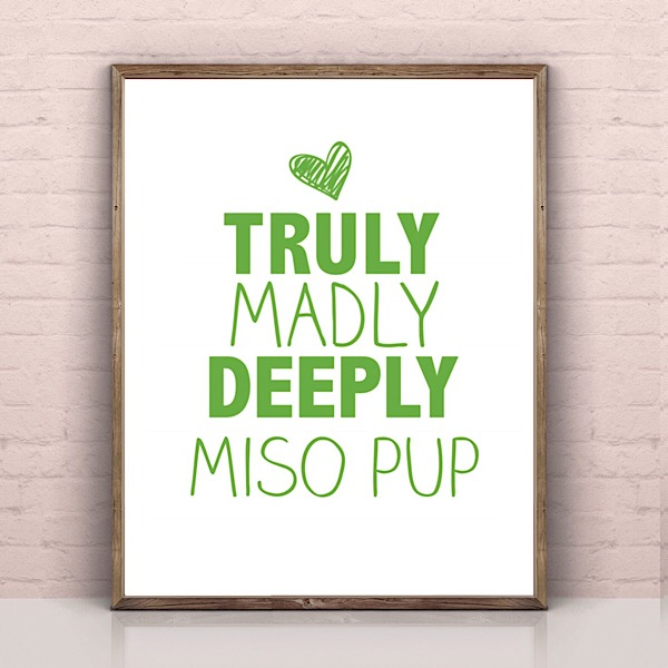 Truly Madly Deeply Miso Pup