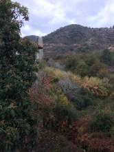 Kakopetria autumn