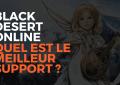 Black desert online meilleur support, black desert online france, bdo france, black desert, meilleur support bdo, best support bdo, misplay, pearl abyss,