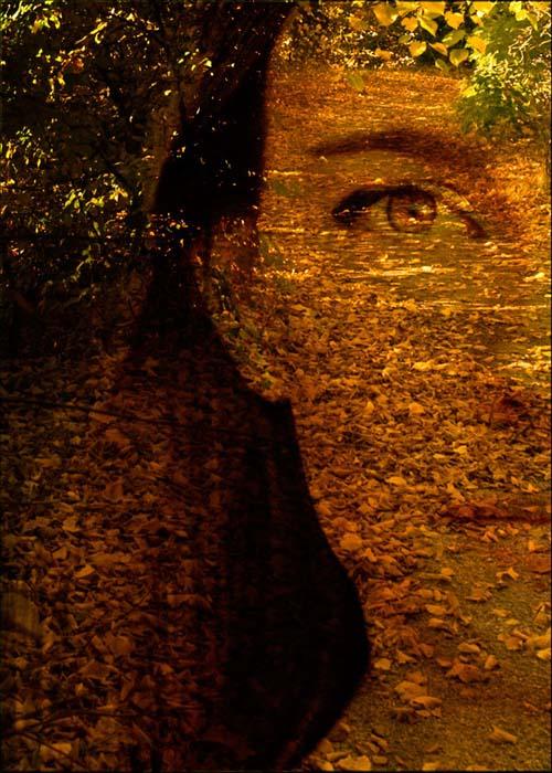 otoño-mágico