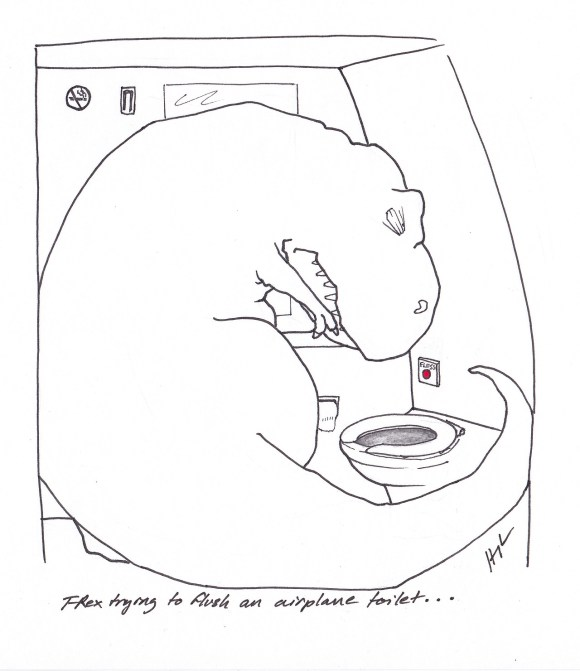 """""""T-Rex trying to flush an airplane toilet"""" by Hugh Murphy"""