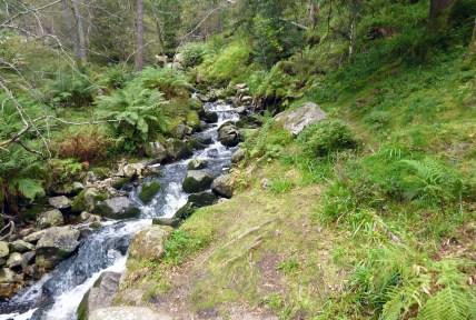 Huch, da ist ja ein Wasserfall! Norwegen