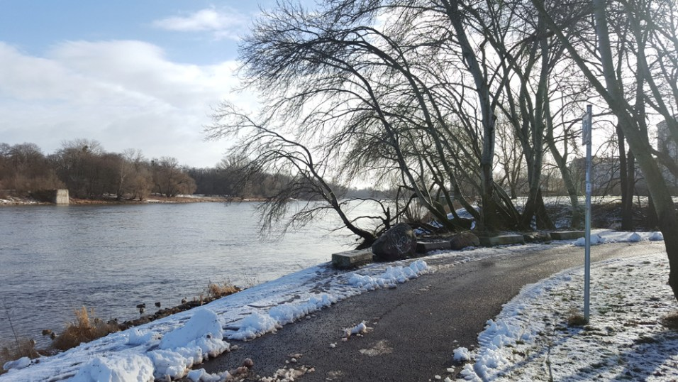 Winterspaziergang in Magdeburg an der Elbe