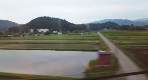 Reisefelder fotografiert aus dem Shinkansen