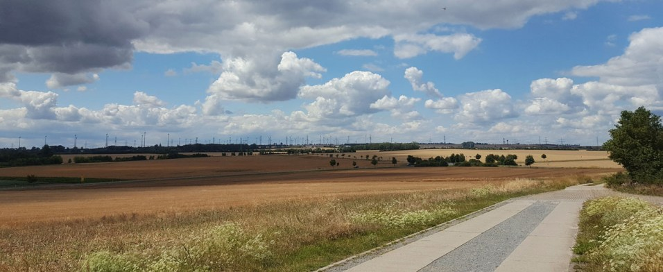 Bierer Berge bei Magdeburg