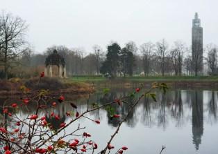 Nebelromantik im Rotehornpark Magdeburg