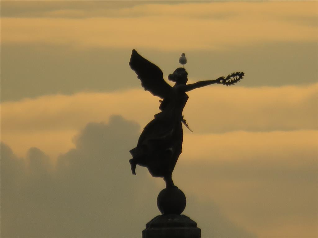 Sunset, statue, and seagull in Aberystwyth