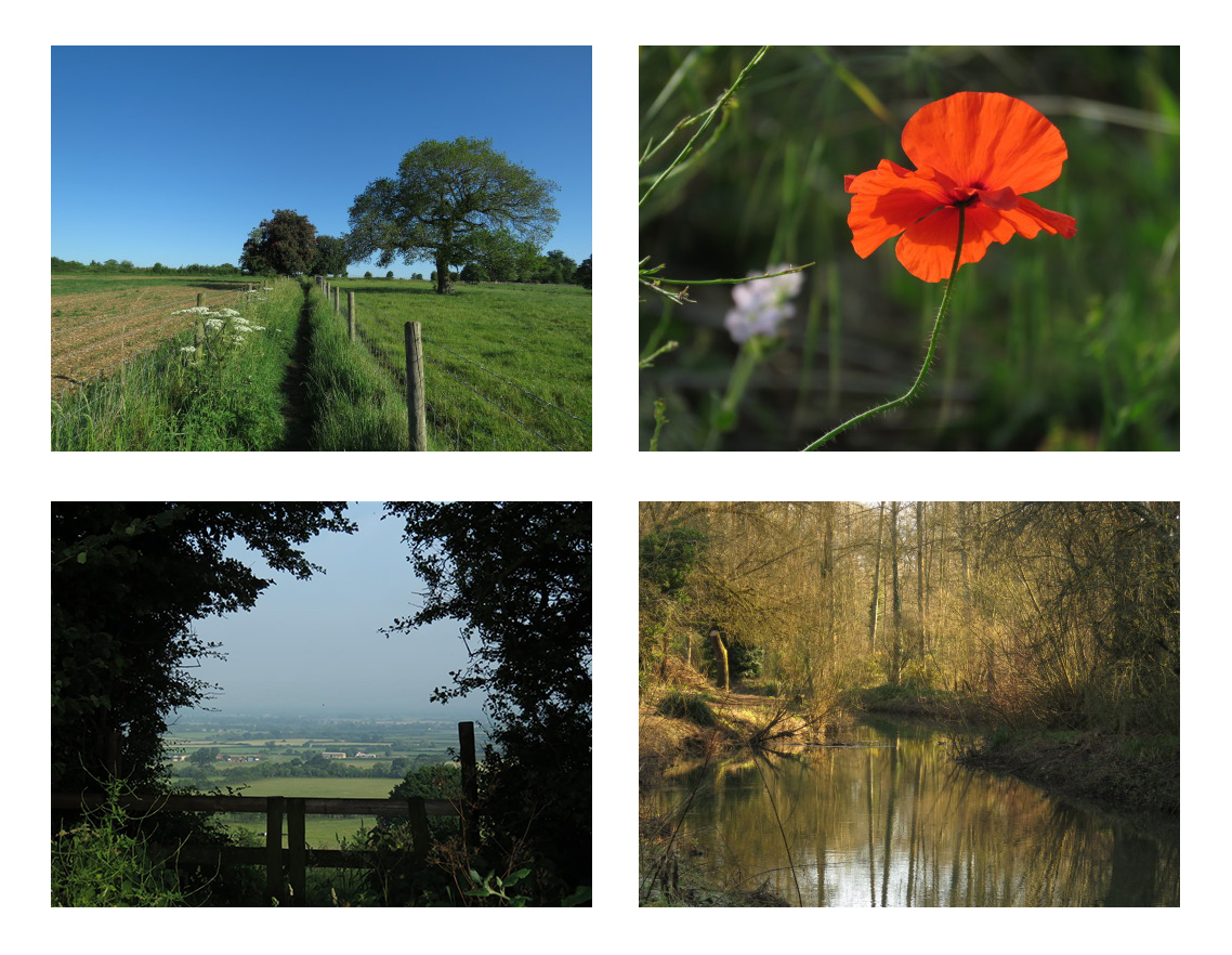 Photographs of the English landscape